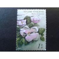 Финляндия 2005 цветы