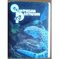 Амфибии. Рептилии. Набор 22 открыток. 1989 г.
