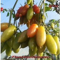 """Семена томата """"Flaschentomaten(Фляшентомат) """""""