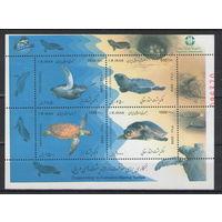 Иран Черепахи 2009 год чистый номерной блок
