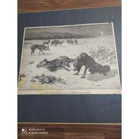 Старинная гравюра 19в.  Германия