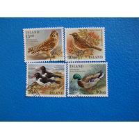 Исландия. 1987 г. Мi-669-672. Птицы.