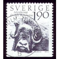 1 марка 1984 год Швеция Буйвол 1273