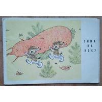 """Голубев А. Обложка к комплекту открыток """"Зима на носу"""". 1970 г."""