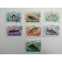 Афганистан 1986. Морская жизнь - Рыбы. Полная серия