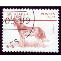 1 марка 1999 год Бенин Собака 1143