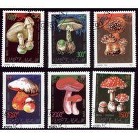 Вьетнам 1991 год  Ядовитые грибы 2275-2280