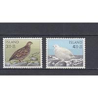 Фауна. Птицы. Исландия. 1965. 2 марки (полная серия). Michel N 388-389 (2,0 е).
