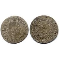 Грош 1535, Пруссия, Альберт Гогенцоллерн