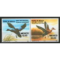 Мексика. Птицы. Сцепка. Ми- 1893-1894. Чистая.
