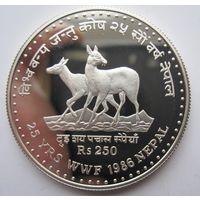 Непал. 250 рупий 2043 (1986г.) Лань. 25 лет WWF. Серебро (93)