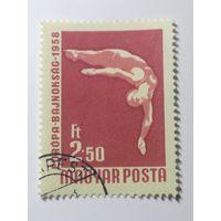 Венгрия 1958. Международные чемпионаты по борьбе и Европейскому плаванию и настольному теннису