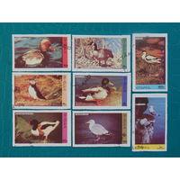 Шотландия 1974г. Птицы