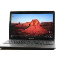 Ноутбук Packard Bell EasyNote TS11-SB-884RU (NX.BYNER.003)