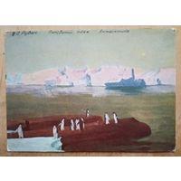 Рубан И. Пингвиний пляж. Антарктика. Соцреализм. 1958 г. Чистая.