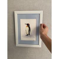 Пингвин акварельный