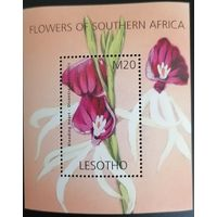 Цветы Южной Африки.