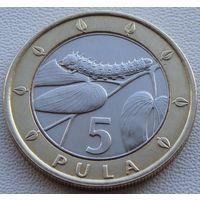 "Ботсвана. 5 пула 2007 год KM#30  ""Гусеница"""