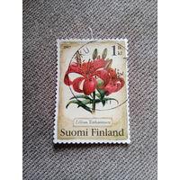 Финляндия 2007. Лилии