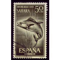 1 марка 1964 год Испанская Сахара Рыбы 255