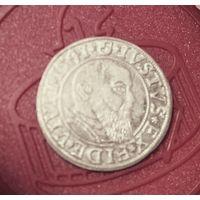 1 грош 1541. Пруссия. Альберт V Гогенцолерн. Серебро. Состояние.