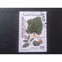 Тунис 2000 плодовое дерево Mi-1,2 евро гаш.