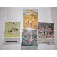 Набор открыток СССР, В мире животных