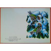 Орлова. В. Корольки красноголовые. 1983 г. Двойная мини-открытка. Чистая.