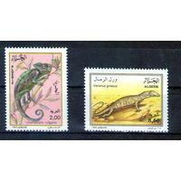 Хамелеон и Ящерица на марках Алжира - полная серия 1993 год