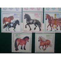 Кони 5 марок