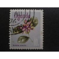 Уганда 1969 стандарт, цветы