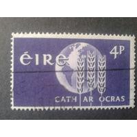 Ирландия 1963 колосья