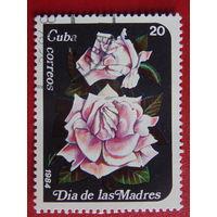 Куба 1984г. Флора.