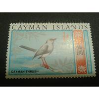 Кайманы 1969 колония Англии птица