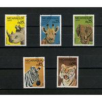Никарагуа 1986г. звери. 5м