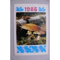Календарик, 1985, Грибы (Украина).