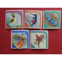 Республика Южно- Молуккские острова.  Птицы.