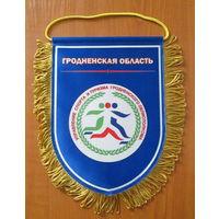 Вымпел.Управление спорта и туризма Гродненского облисполкома
