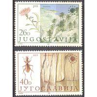 Югославия природа флора насекомое