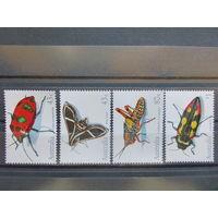 Австралия\950\ 1991 насекомые. MNH