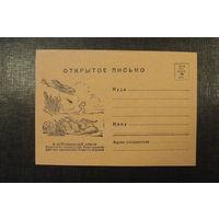 Одностороннее открытое письмо 1942 года (почтовая карточка).