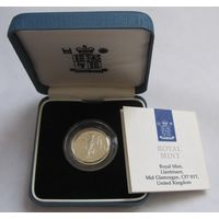 Великобритания, фунт, 1990, серебро, пруф