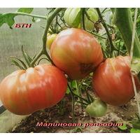 Семена томата Малиновая Рапсодия