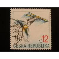 Чехия 2002 олимпиада, фристайл
