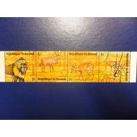 Бурунди-фауна-сцепка из 4 марок