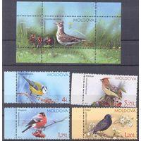 Молдова 2015 птицы фауна