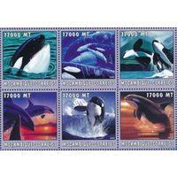 2002 Мозамбик Фауна Киты MNH СЕРИЯ 6 МАРОК \5