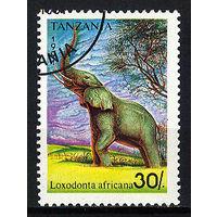1991 Танзания. Слон