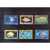 Коралловые рыбки на марках Гайаны