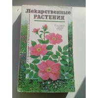 Лекарственные растения. Использование в народной медицине и быту